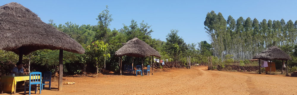 eco-tours-odisha